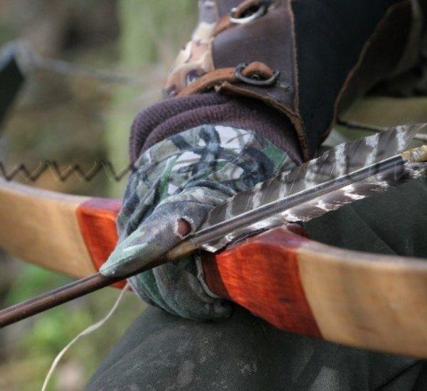 Formation chasse à l'arc