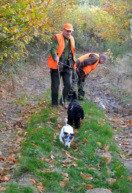 Un Dimanche à la chasse : happy end !