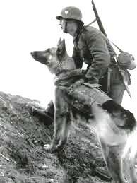 La chasse en temps de guerre