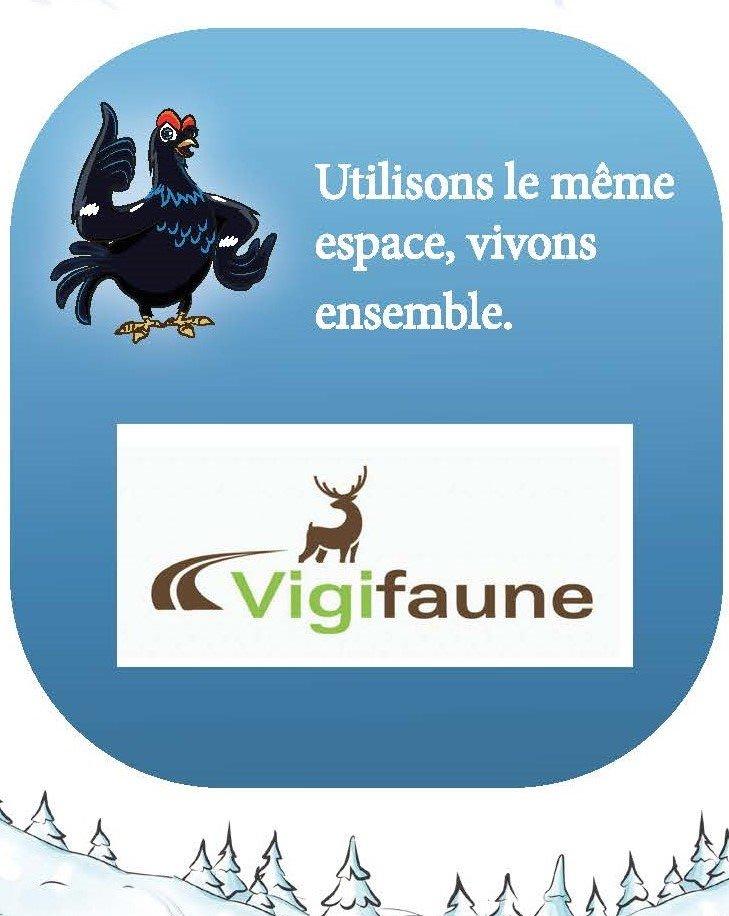 Vigifaune : une appli « tout chut » pour le Tétras-lyre