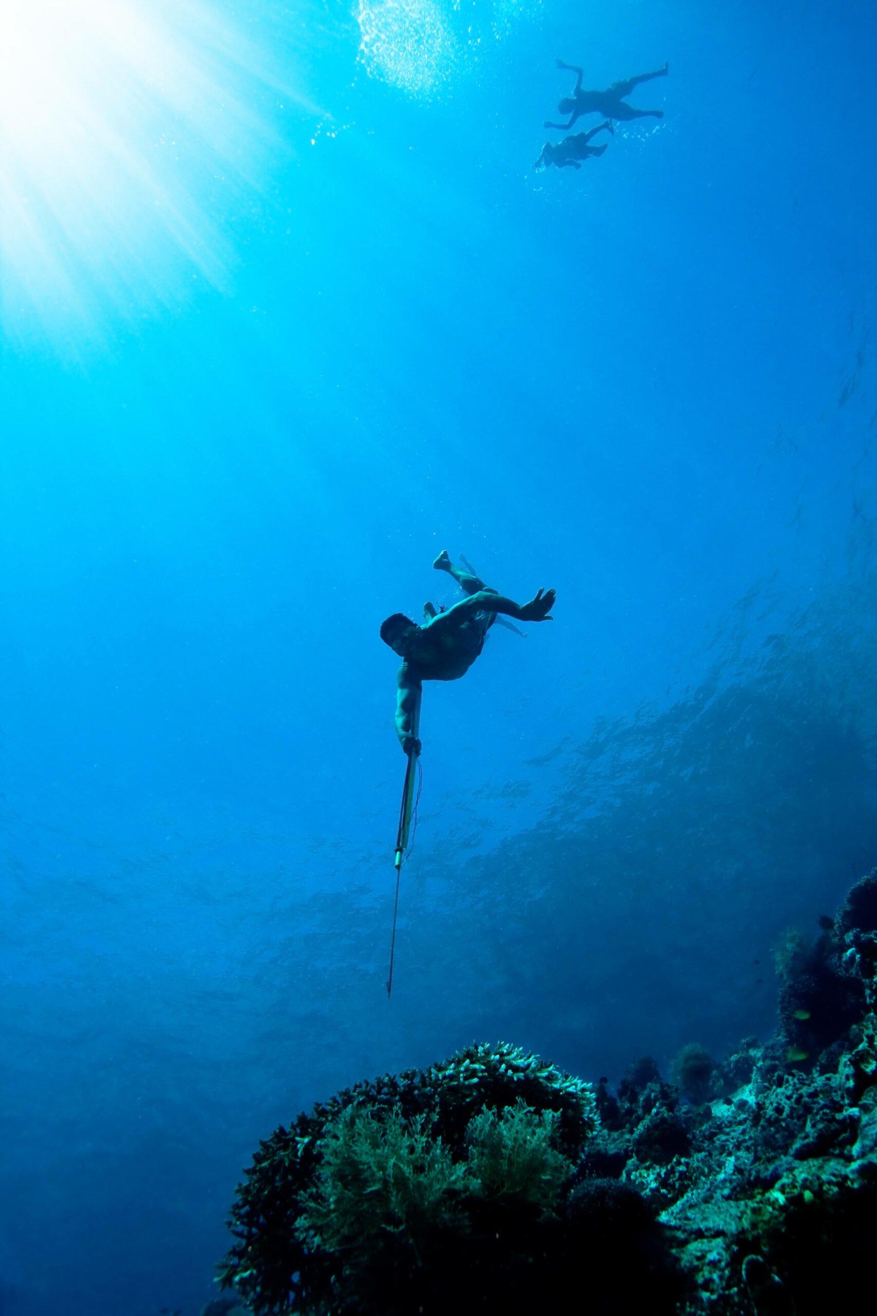La chasse sous-marine : une activité à découvrir